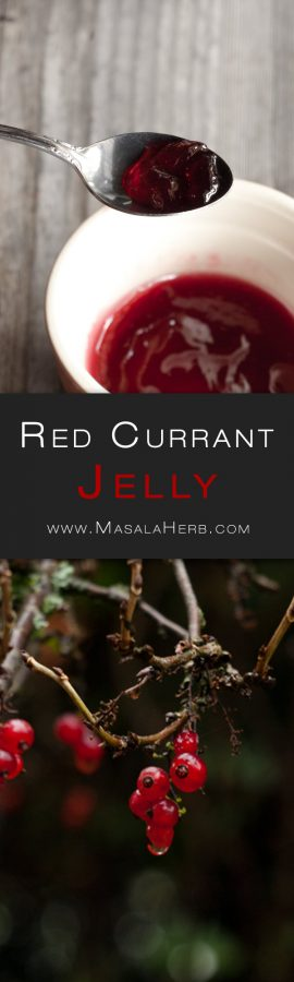 Photo of Easy Red Currant Jelly Recipe {no pectin} + How to tips | Masala Herb