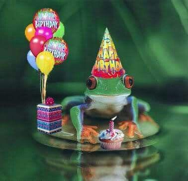 frog birthday Birthday Frog | Frog Holiday Pics/Etc | Birthday wishes, Happy  frog birthday