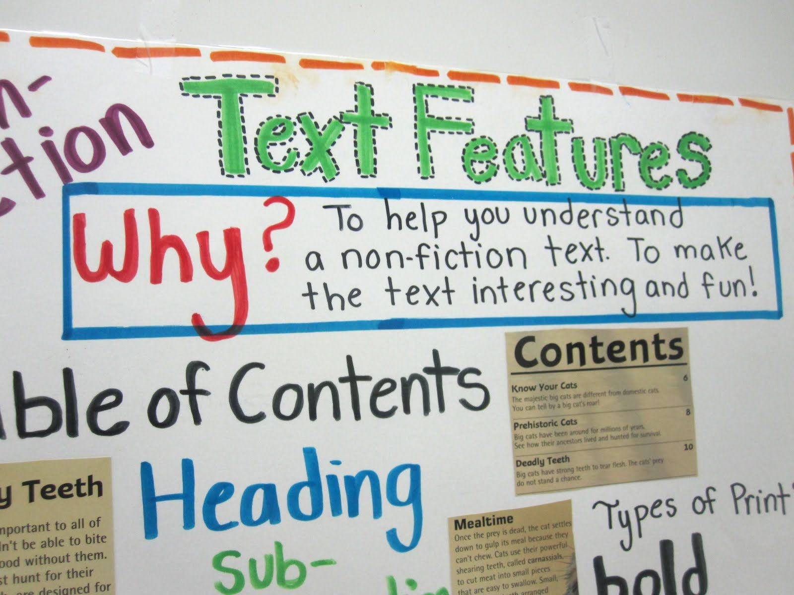 Worksheets Nonfiction Text Features Worksheets nonfiction text features worksheet for second grade 1000 images about reading non fiction text