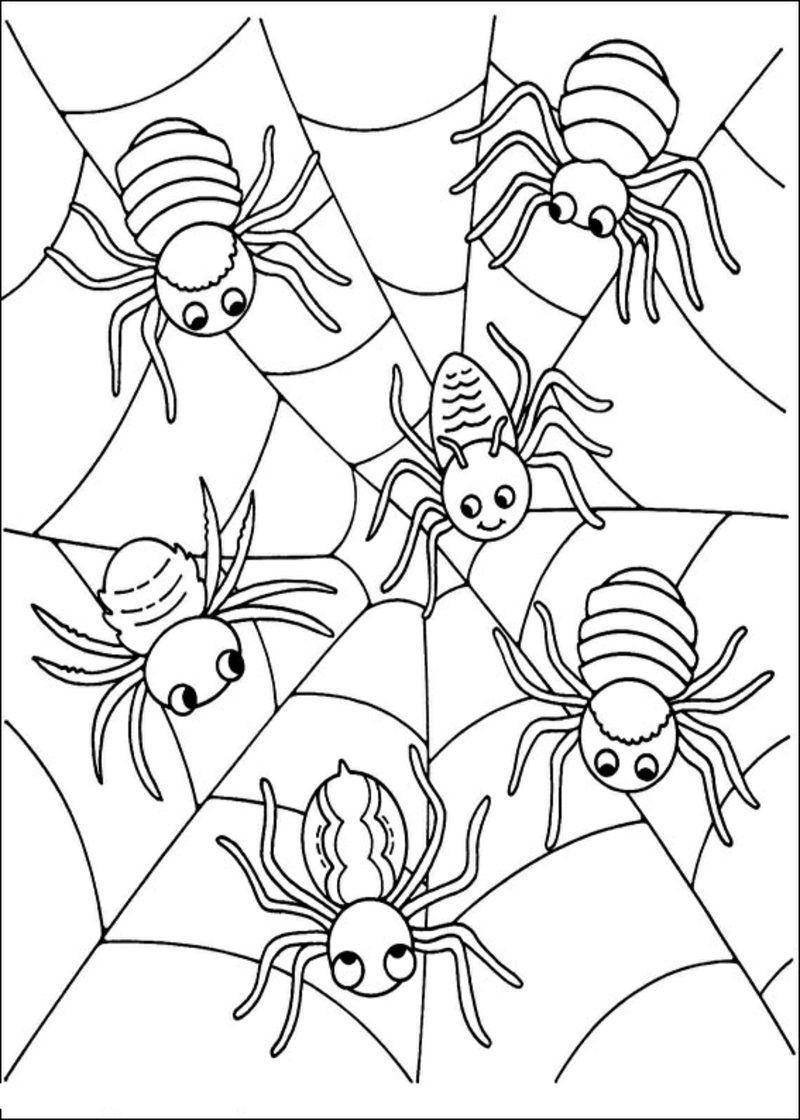 Halloween Ausmalbilder Fledermaus Malblatt Furkinder Ausmalbilderfur Drawings Boyamasay Halloween Coloring Halloween Coloring Sheets Spider Coloring Page