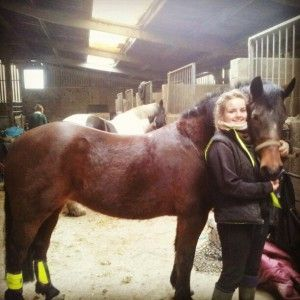 "Stephaine feeds her 21 year old horse Cindy Global Herbs SuperCalm and said: ""Stephanie said: ""I would like to say that I use your products regularly and I really love them"". See more at: http://globalherbs.co.uk/blog/supercalm-testimonial-stephanie-brisley-and-cindy"