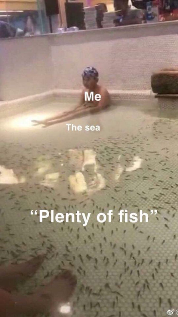 Plenty Of Fish In The Sea But Non Of Them Want Me Funny Relationship Memes Funny Relatable Memes Really Funny Memes