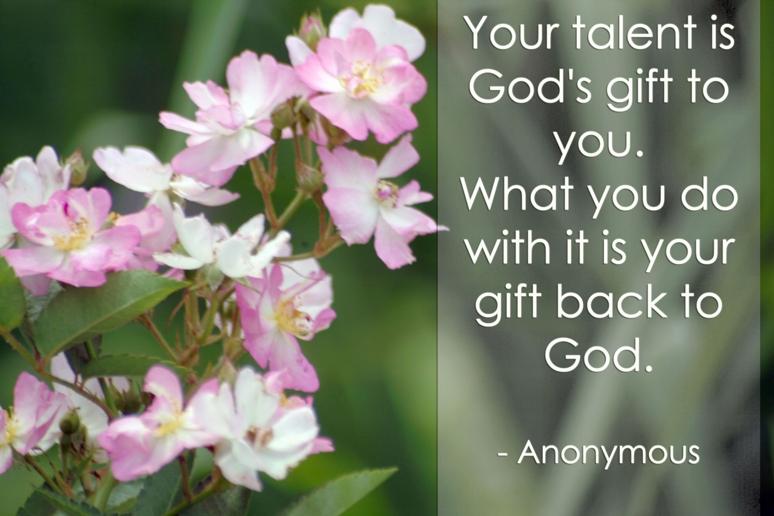 your talent is god rsquo s - photo #31