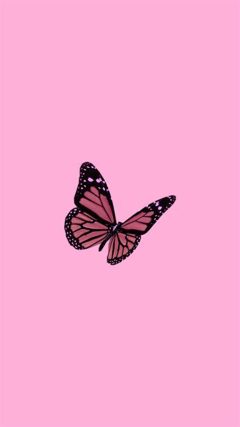 Mariposa Del Papel Pintado Iphone Estética | Ipcwallpapers
