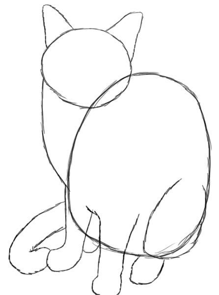 today we are going to learn how to draw a cat this is a tutorial