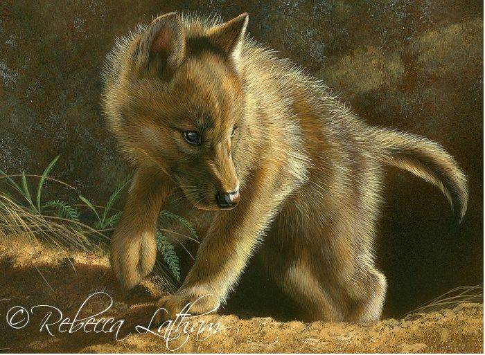 Out of the Den - Wolf Puppy