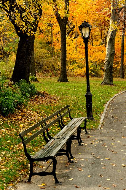 New York City Color Flickr Photo Sharing I Just Simply Love
