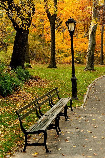 Autumn In Central Park Manhattan 72nd Str West Side Next To