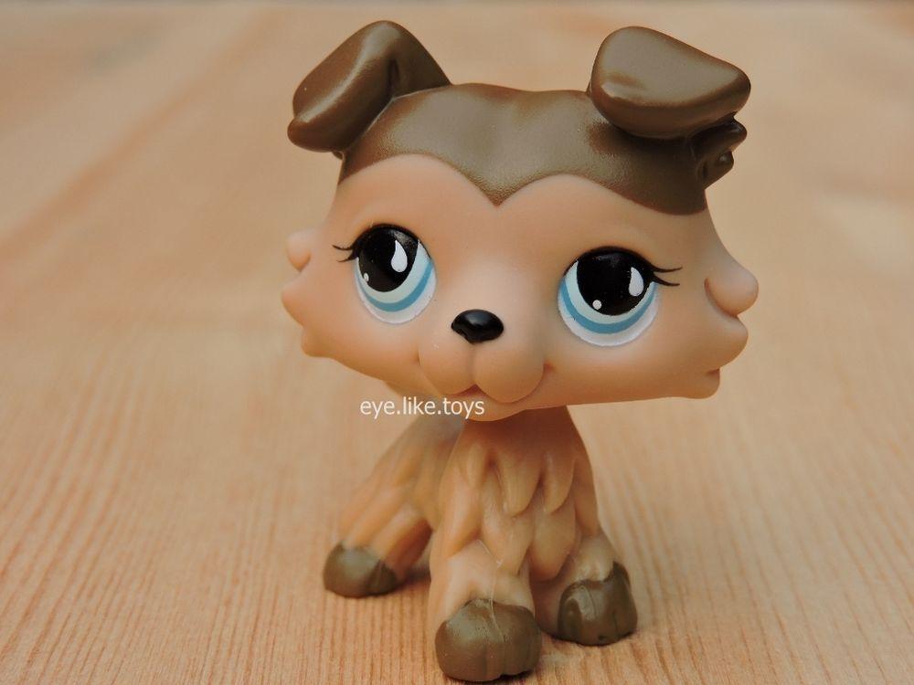 Hasbro Littlest Pet Shop Rare Lps 893 Figure Tan Collie Dog Puppy