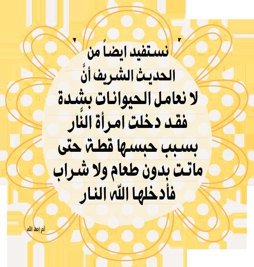 قصة الرجل الصالح والكلب قصة حكاها النبي صلى الله عليه وسلم Novelty Sign