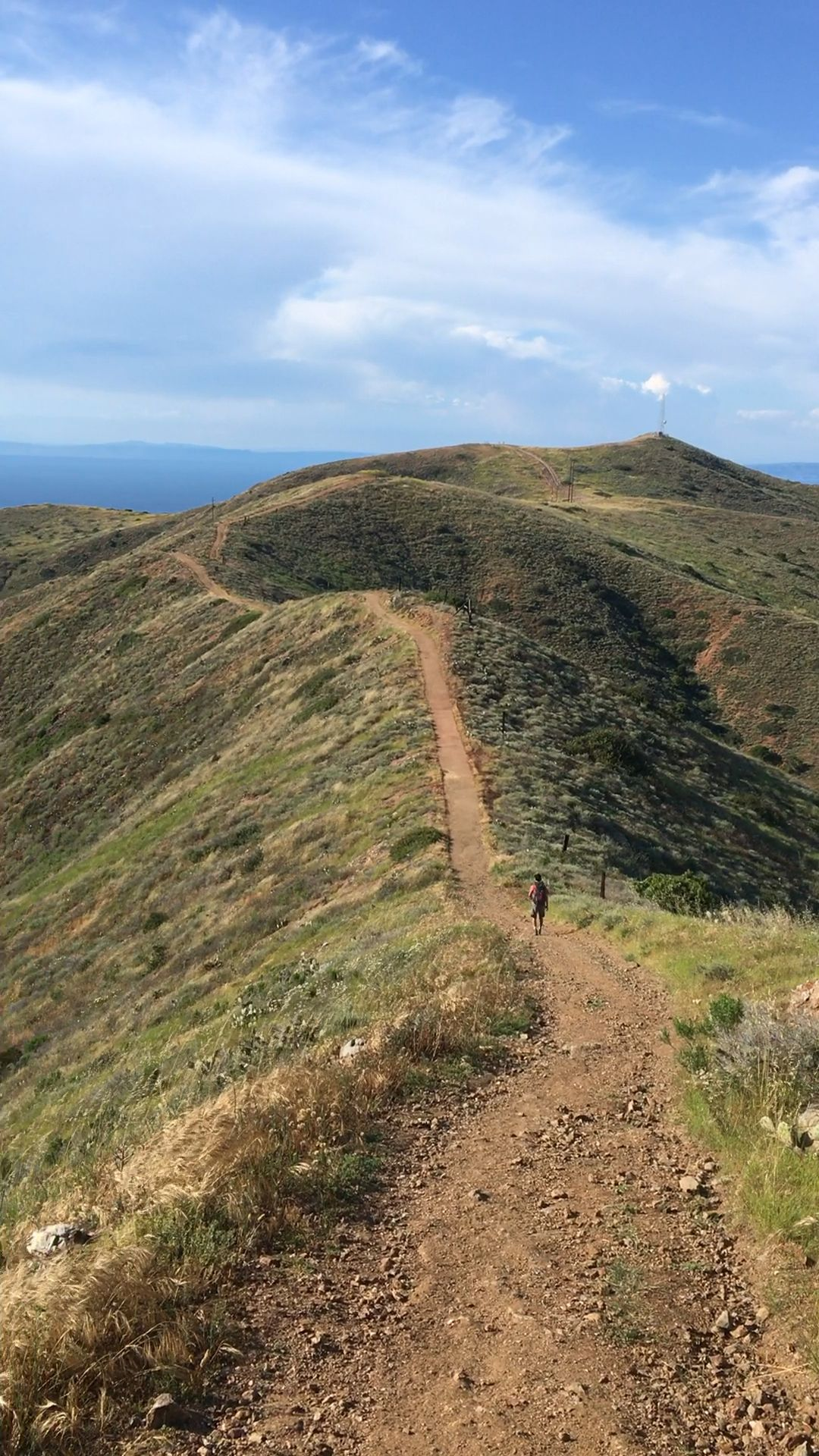 Backpacking The Trans-Catalina Trail: All You Need To Know