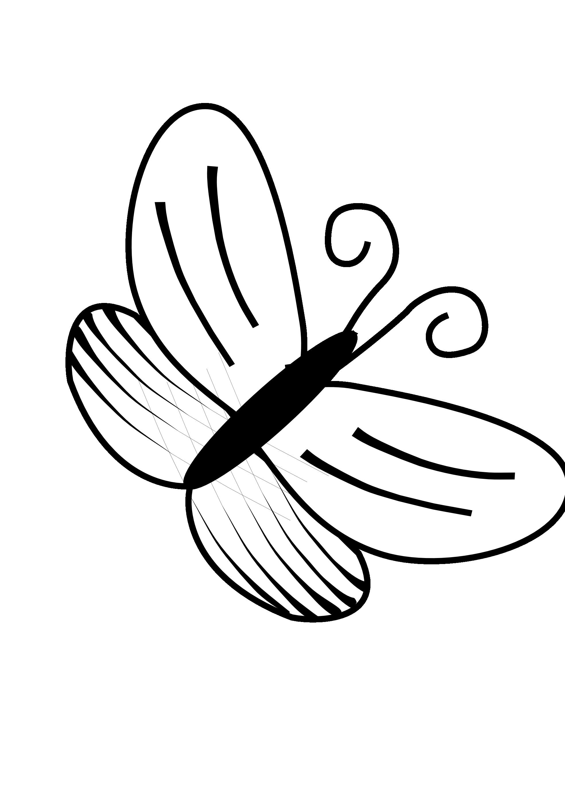 line drawings of butterflies clipart best [ 1969 x 2785 Pixel ]