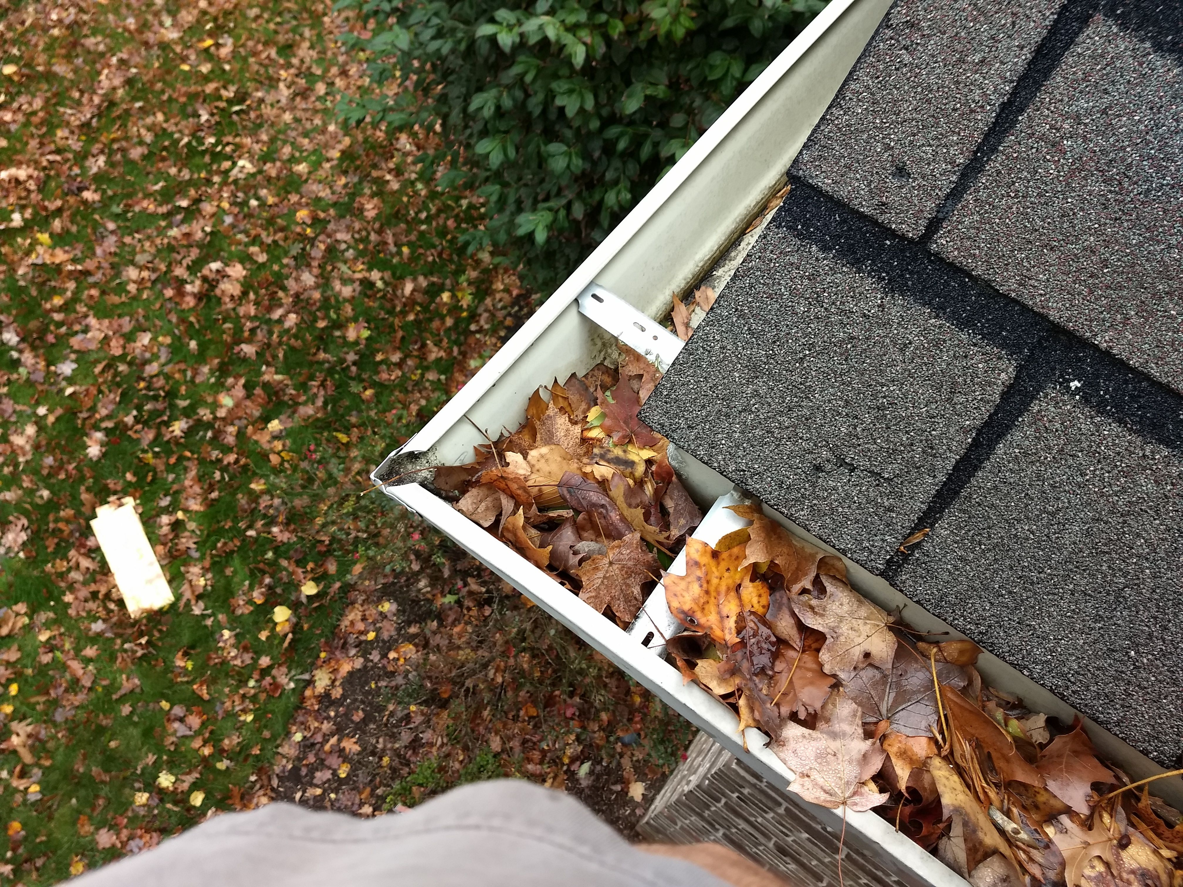 An Overview Of Gutter Cleaning Services