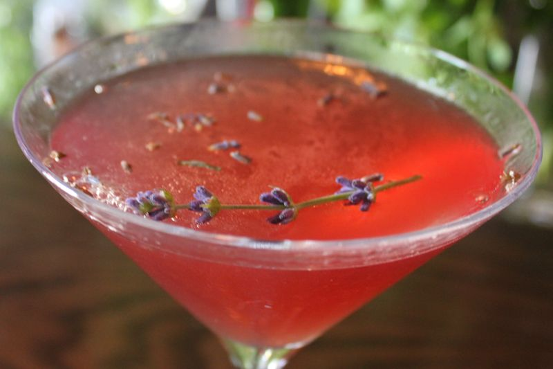 Lavender Splash Cocktail, Fresh from the Medlock Ames' Garden in Sonoma County