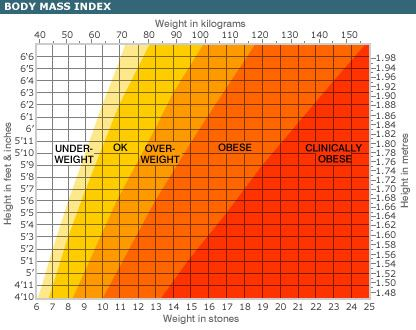 How To Calculate Bmi Are You Overweight Pinterest Weight Loss