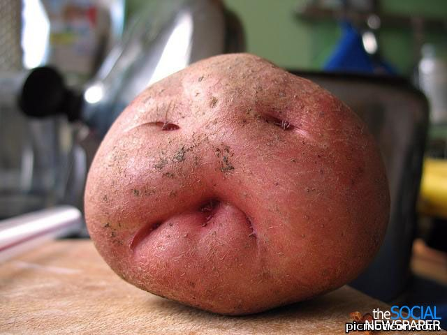 Weird Fruits With Faces 8