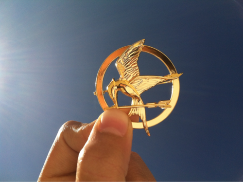 anyone wanna buy this for me?? | Hunger games, Hunger ...