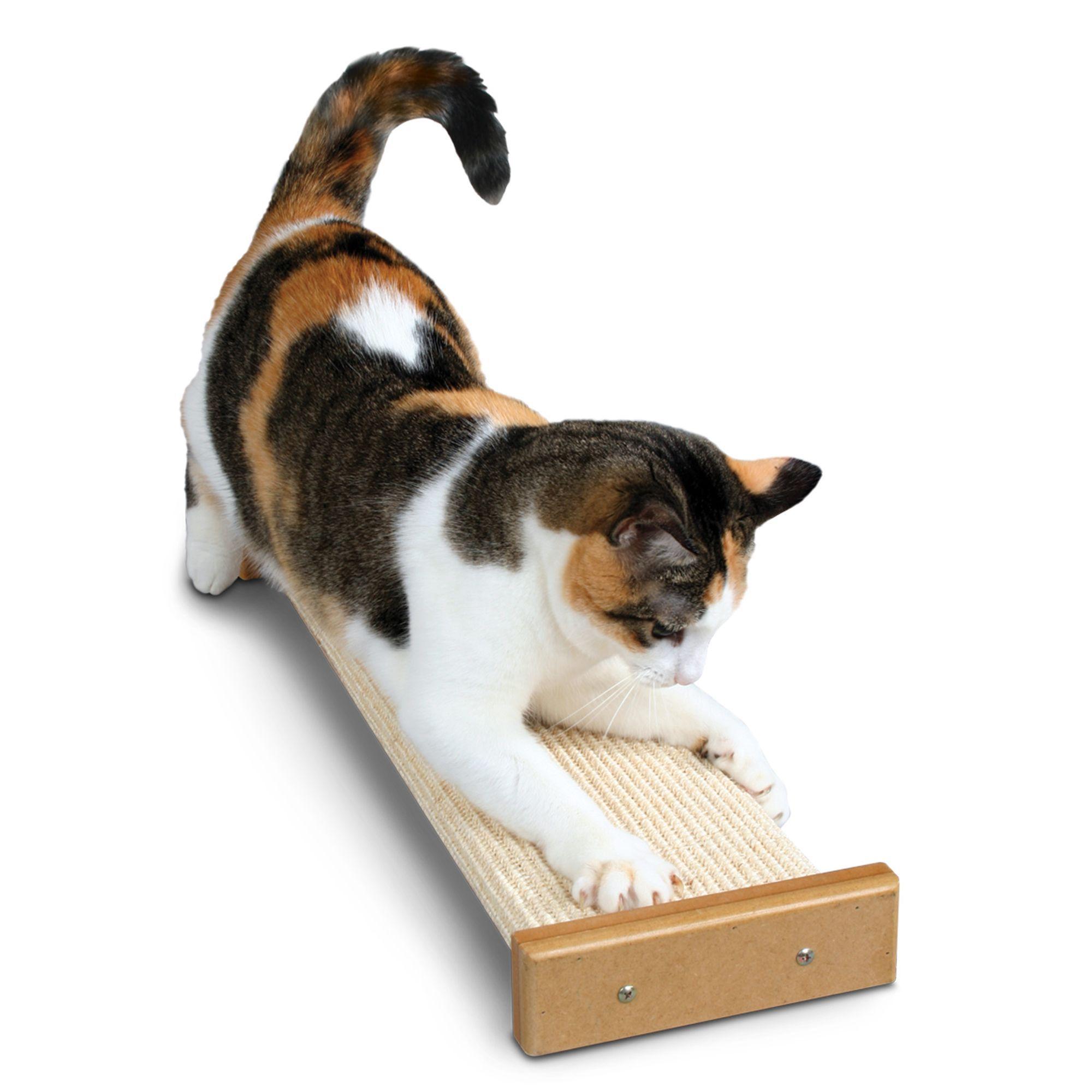Pioneer Pet SmartCat, Bootsie's Combination Cat Scratcher