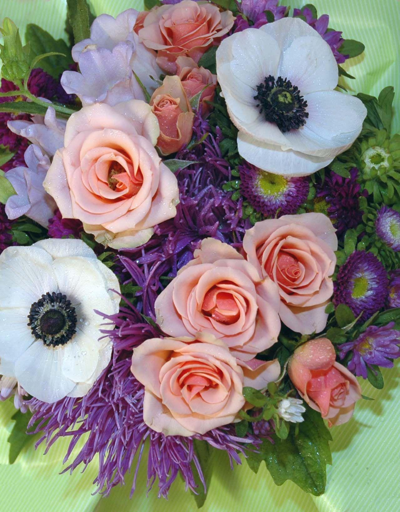 Flowers roses wedding wholesale online send birthday bulk flowers roses wedding wholesale online send birthday bulk izmirmasajfo