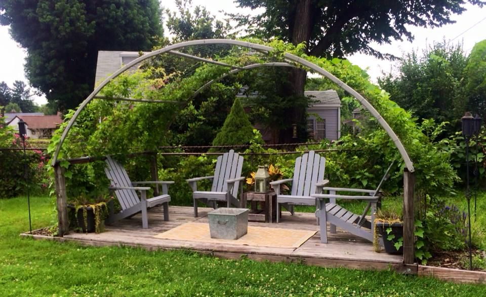 Re Purposed Trampoline Frame Makes A Beautiful Arbor For Wisteria To Cover Dill Thebeau Interior Design Backyard Old Trampoline Backyard Trampoline