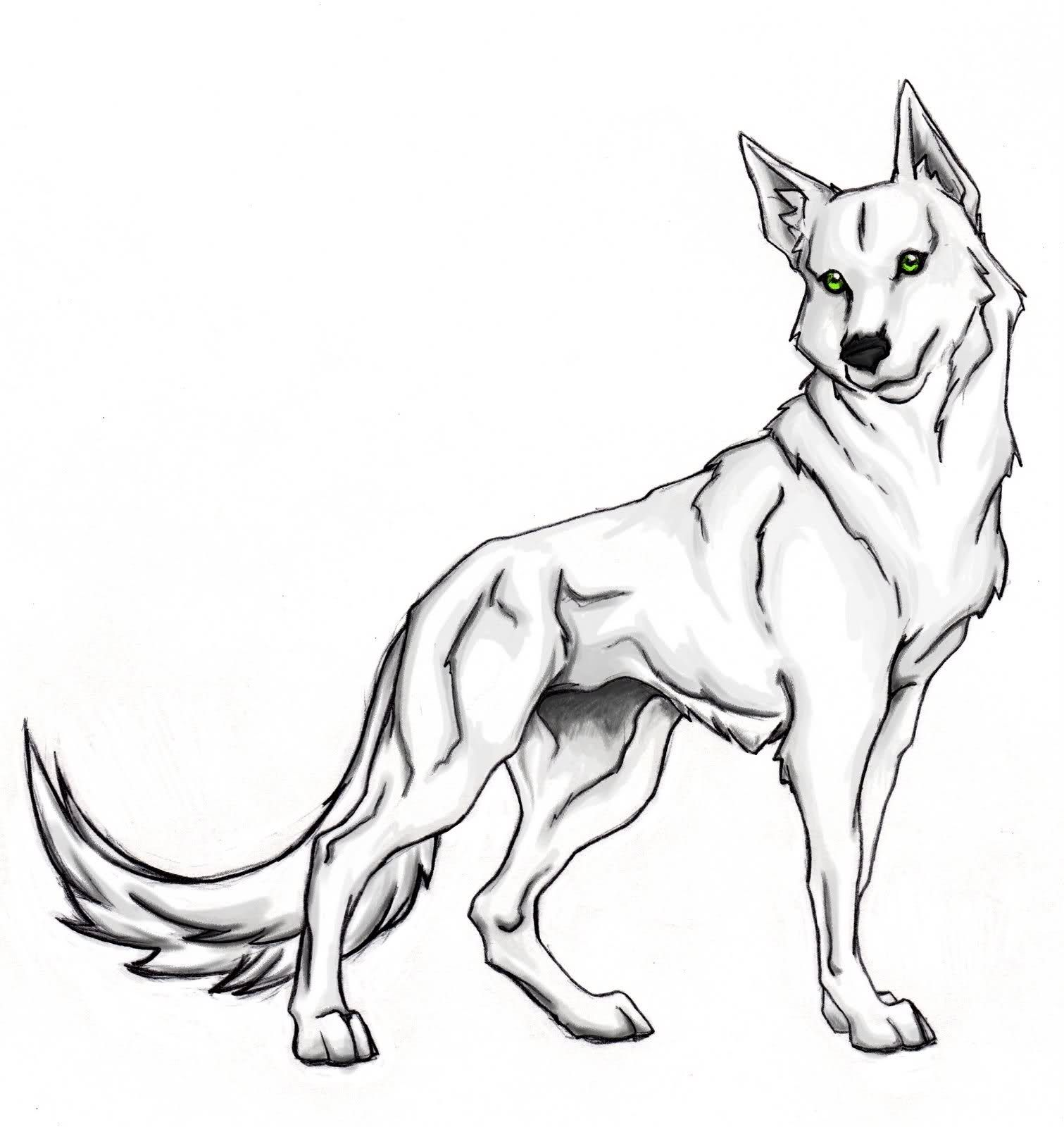 Cute Wolf Coloring Page 23 Free  Wolf colors, Animal coloring