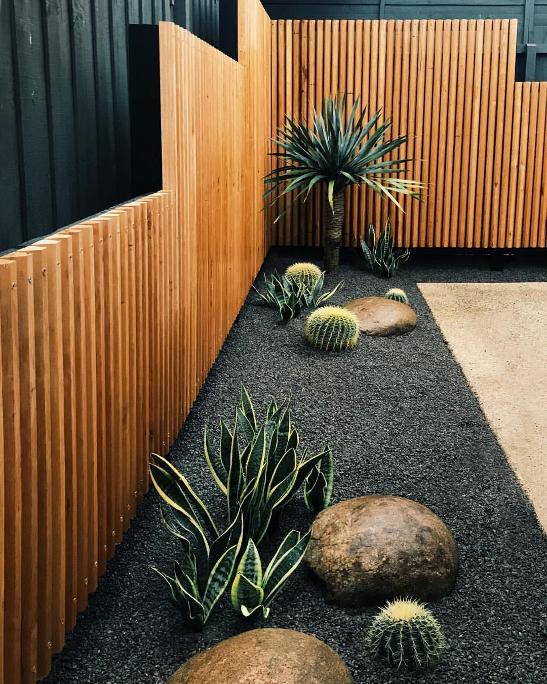 "Photo of Port Phillip Landscaping on Instagram: ""A little cactus garden with a @radialtimber screen = the perfect match ??"""