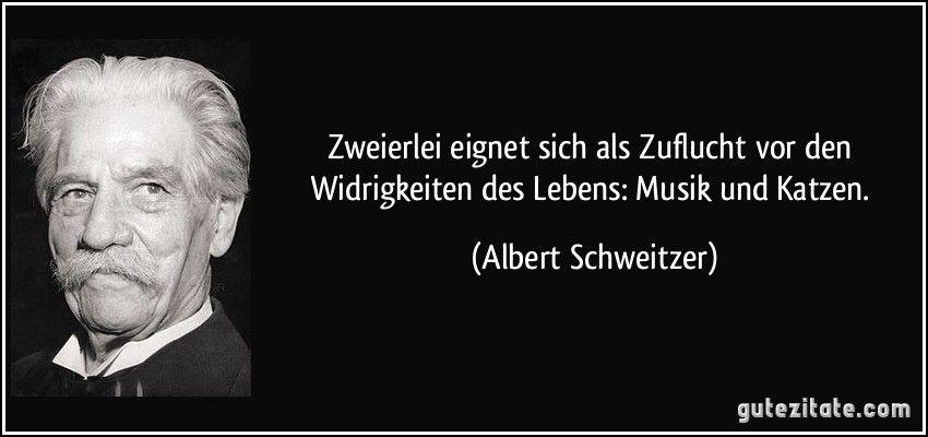 Albert Schweitzer Albert Schweitzer Zitate Weisheiten Zitate Spruche Zitate