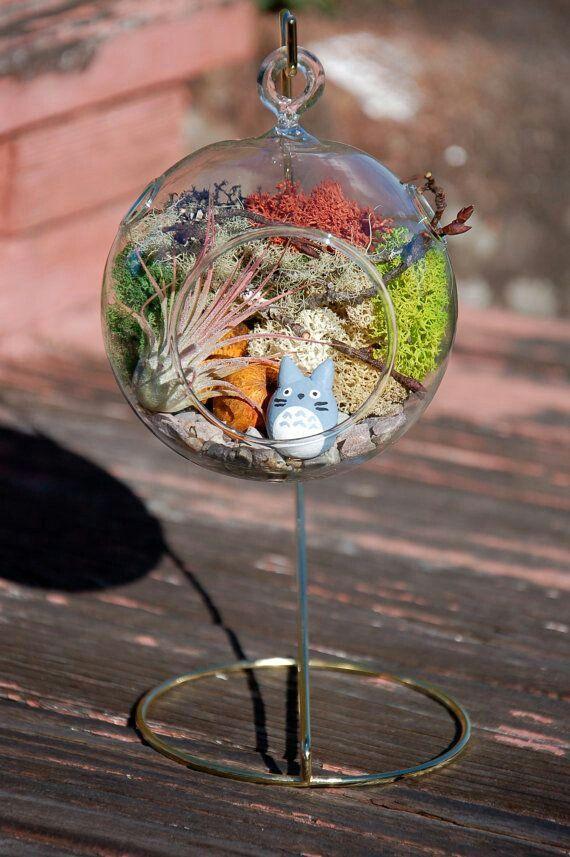 Diy Totoro Hanging Terrarium Stuff I Want To Make Pinterest
