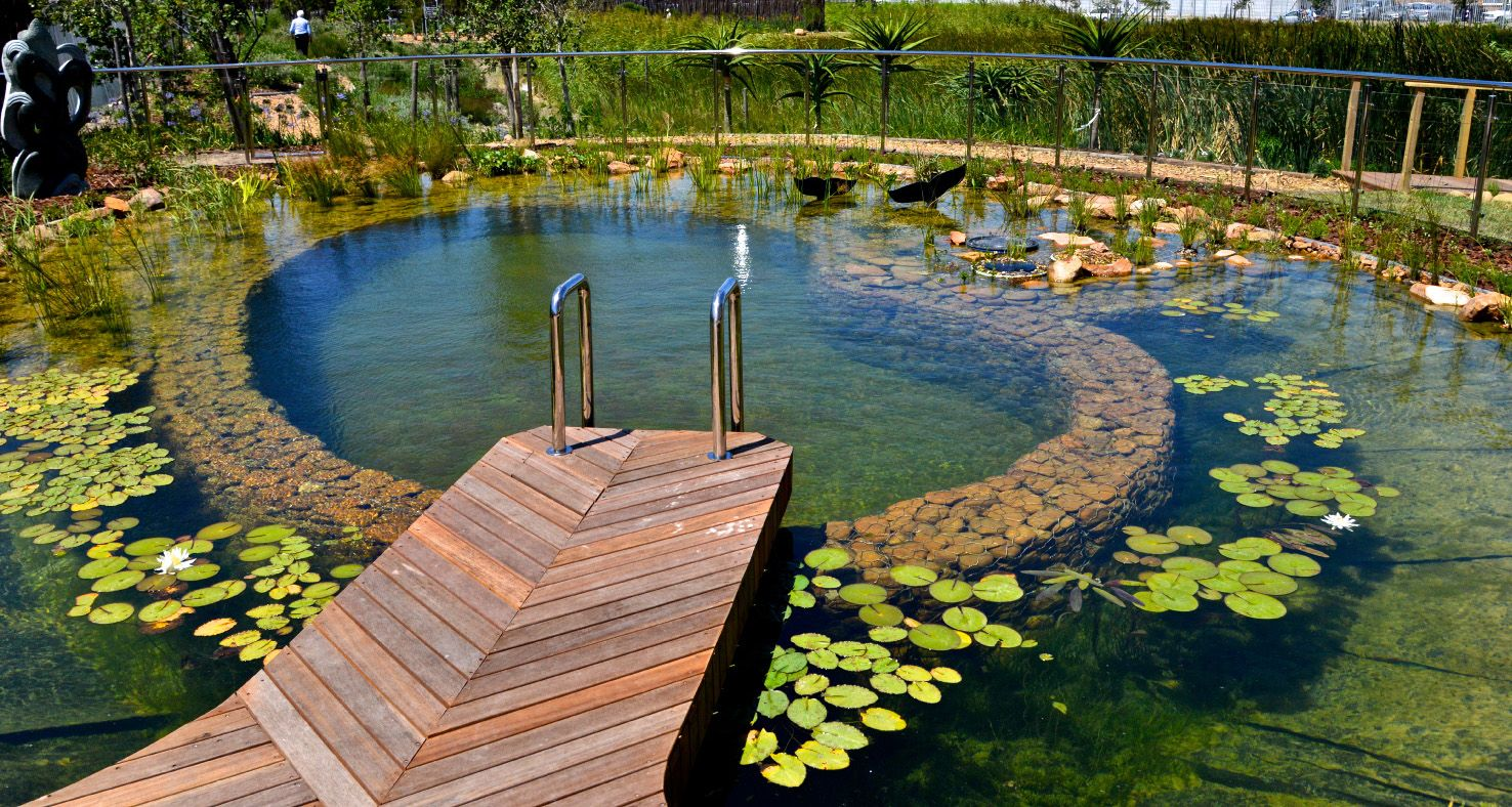Natural swimming pool hotel verde cape town hotel for The garden pool