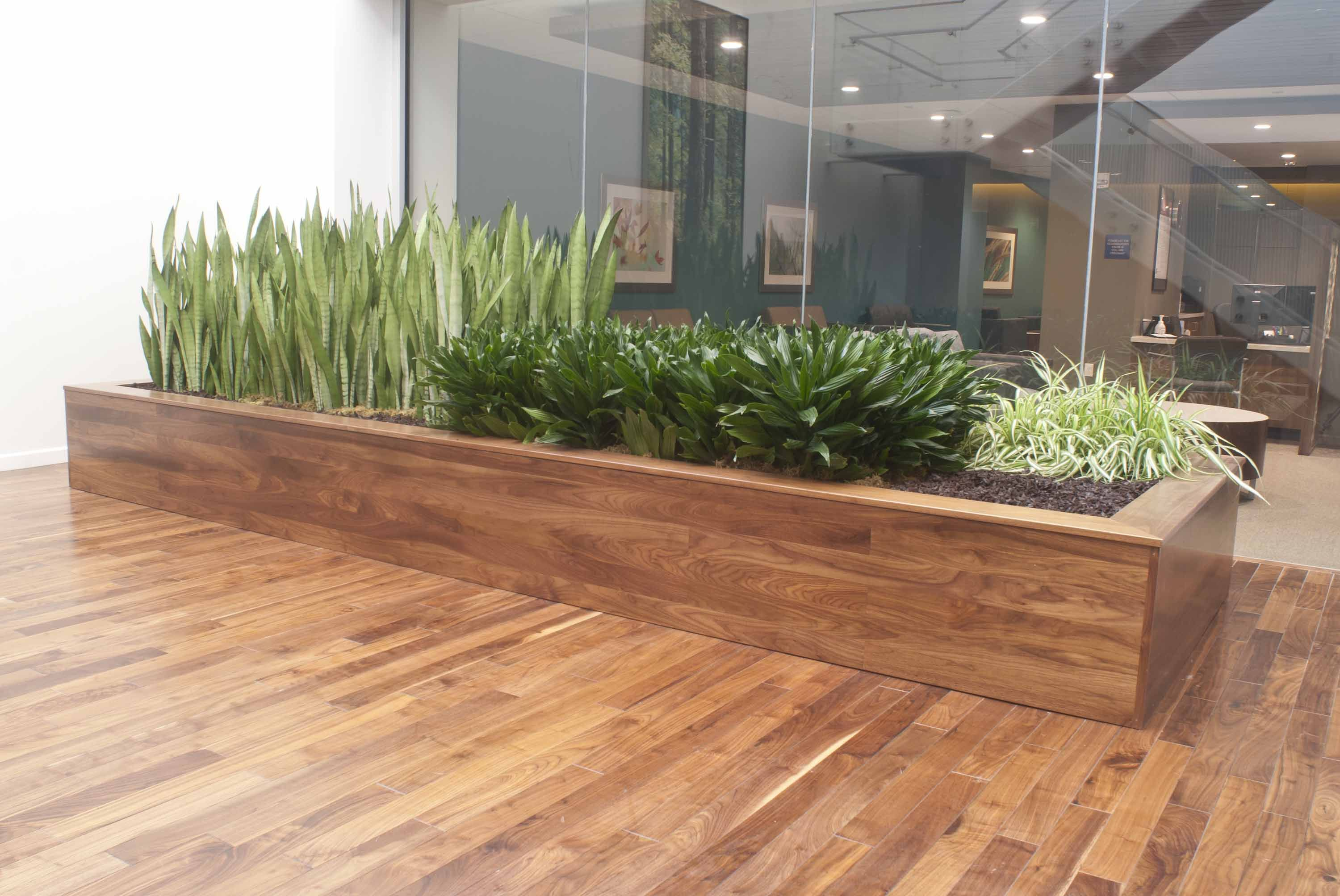Stylish and modern large scale planter box created by for Modern indoor plants