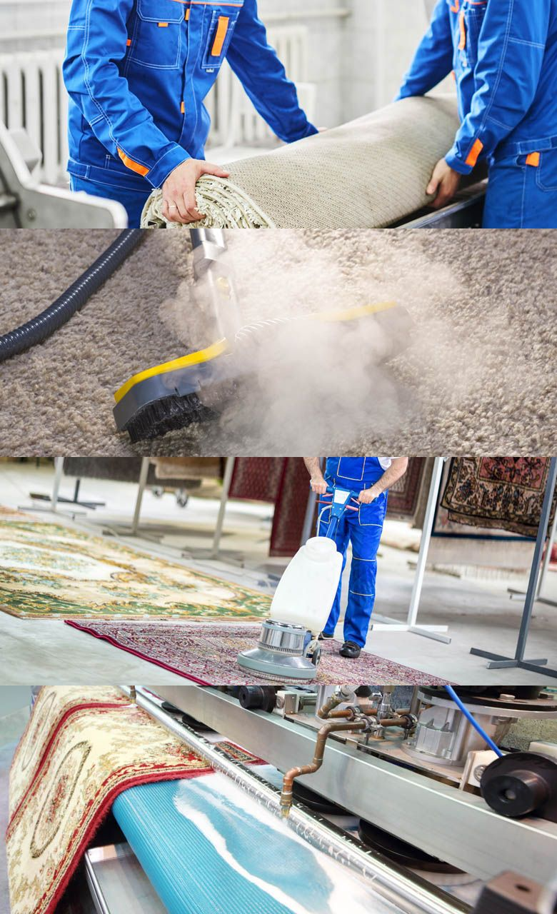 Keep Your Carpets Clean And Stay Healthy For more detail ...