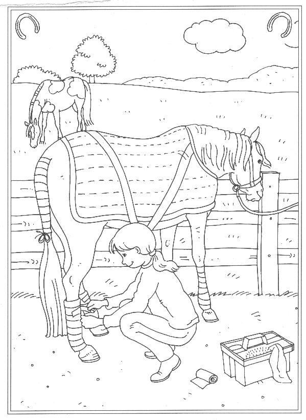 Kleurplaat Paardenmanege Gratis Kids N Fun 24 Kleurplaten Van Op De Manege Kleurplaten