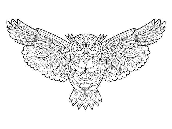 Buho Owl Sabiduria Mandala Dibujos Con Mandalas Diseno De