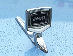 A Closer View Of The Standard Hood Ornament On All 1986 91 Jeep