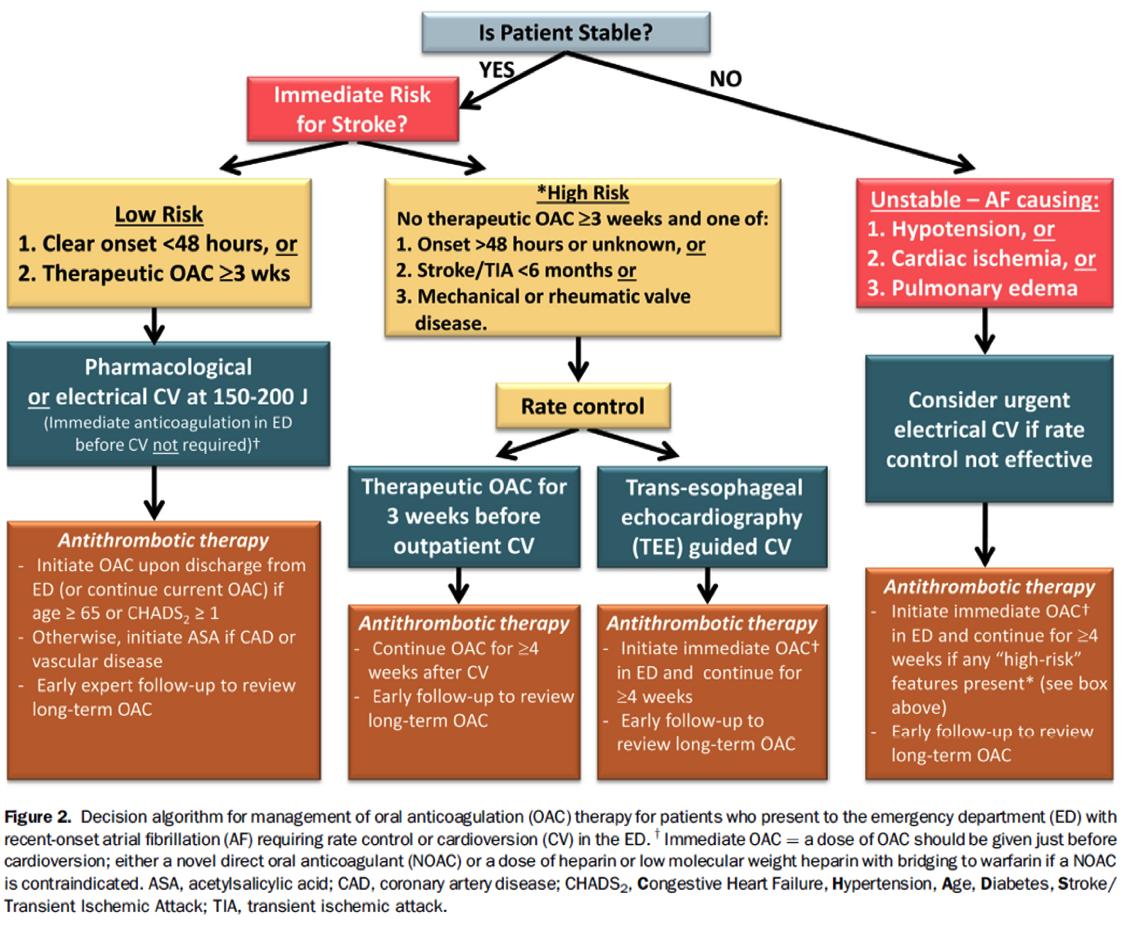 stroke Emergency medicine, Algorithm, Guidelines