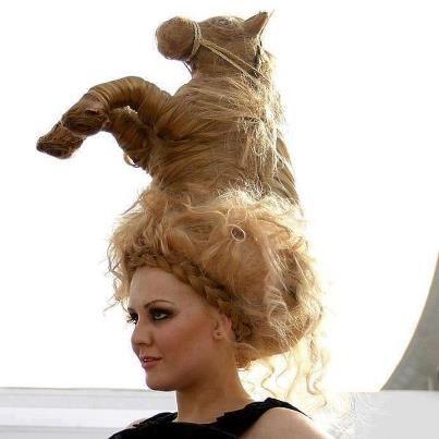 horse hair style ; humor