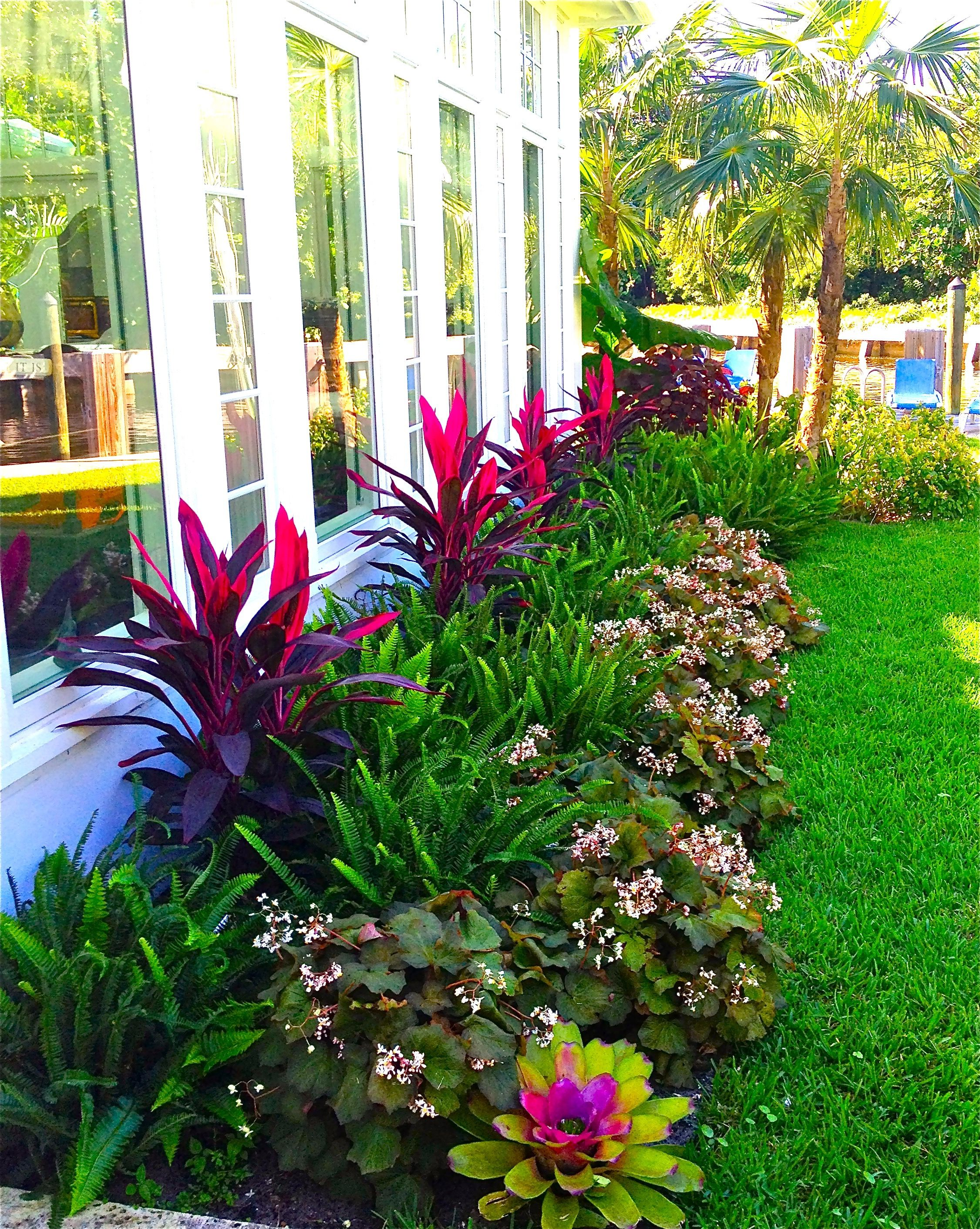 Stunning way to add tropical colors to your outdoor for Front lawn plant ideas