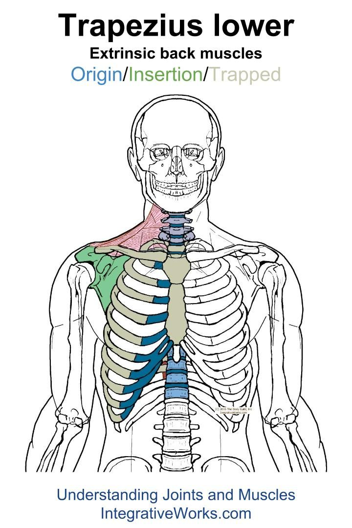 Understanding Trigger Points Burning And Itching Along The