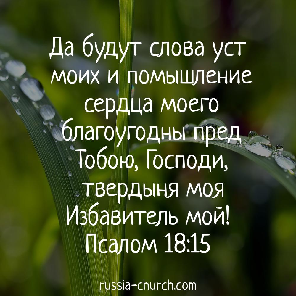 пилюлькин открытки со словом божиим считают