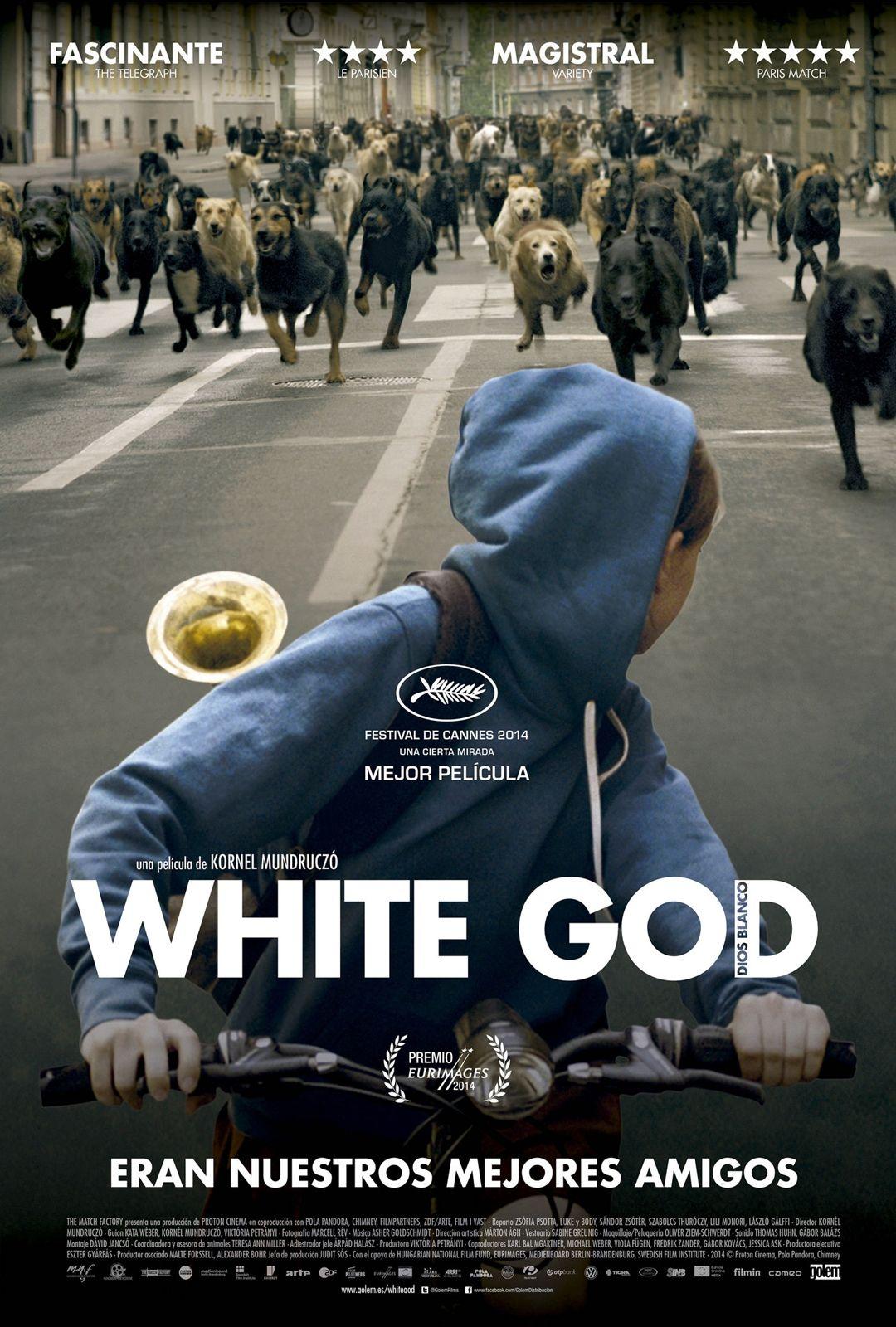 Estrenosgercomovies White God Dios Blanco Hagen Y Yo 2015 Subtitulada Ya Disponible Http Www Gercomovies Com P Peliculas Cine Películas Completas
