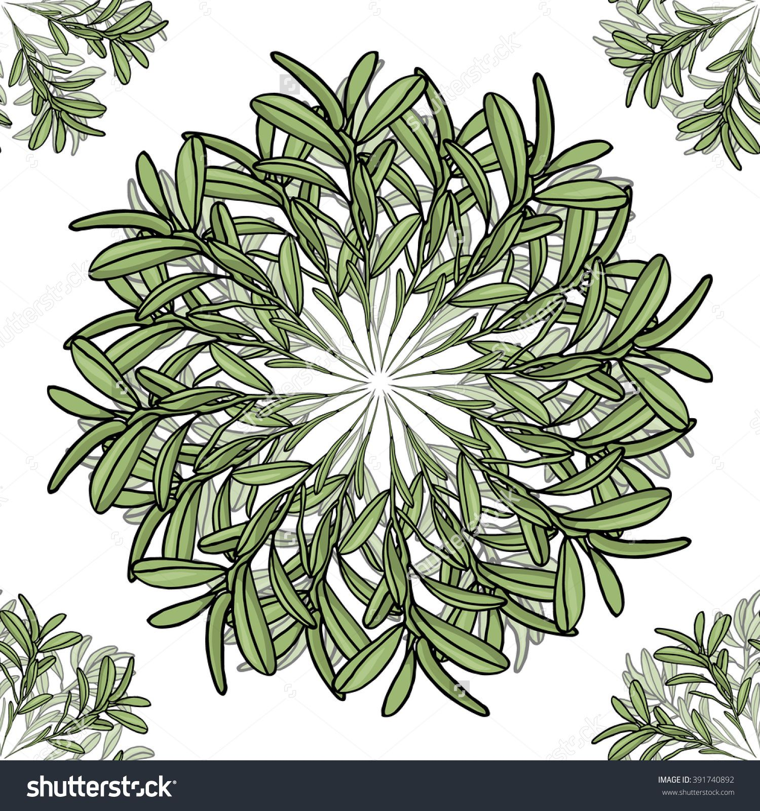 Olive Branch Big And Small Mandala Seamless Pattern. Circles Of ...