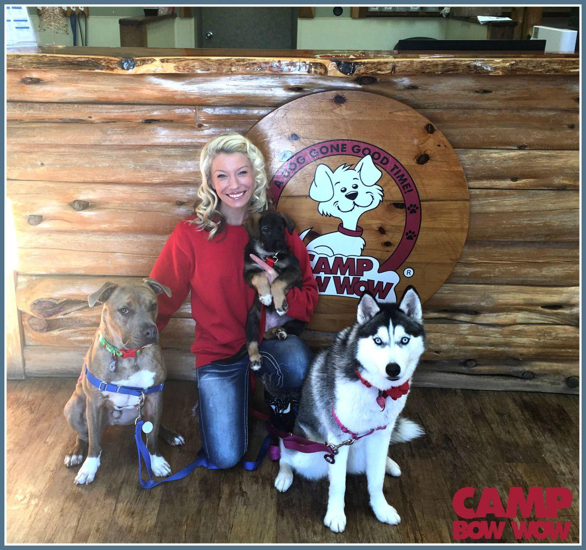 Meet Certified Dog Trainer Brand Ambassador Heather G Dog Blog Dog Trainer Dogs