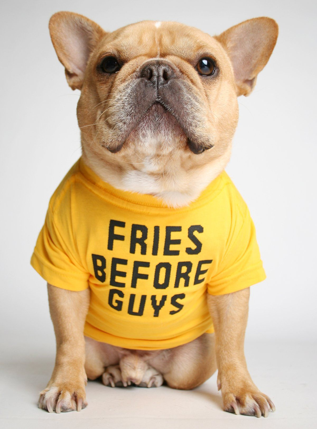 Fries Before Guys Dog Tee Dog Shirt Training Your Dog French