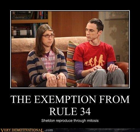 Big bang theory rule 34
