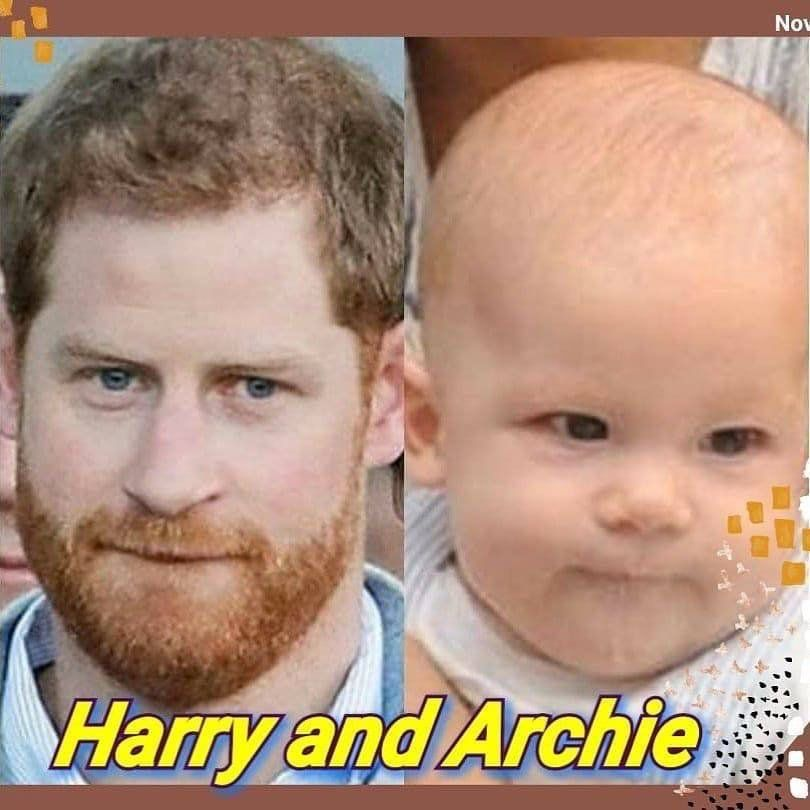 pin by angela flemming may on prince harry in 2020 prince harry prince harry and megan prince harry and meghan angela flemming may on prince harry