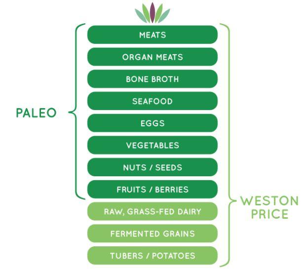 The Modern Paleo Diet Myersdetox Com Paleo Diet Paleo Diet Guide Paleo