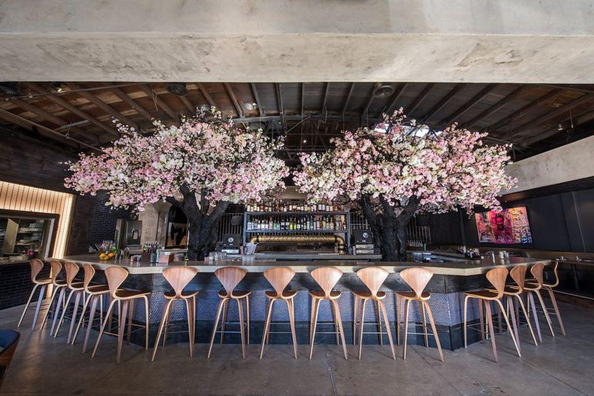 San Diego's Most Beautiful Restaurants of 2017 San diego