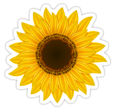 Sunflower Yellow Cute Colorful Flower Flowers Sticker By Myhandmadesigns Sunflower Clipart Sunflower Png Sunflower Images