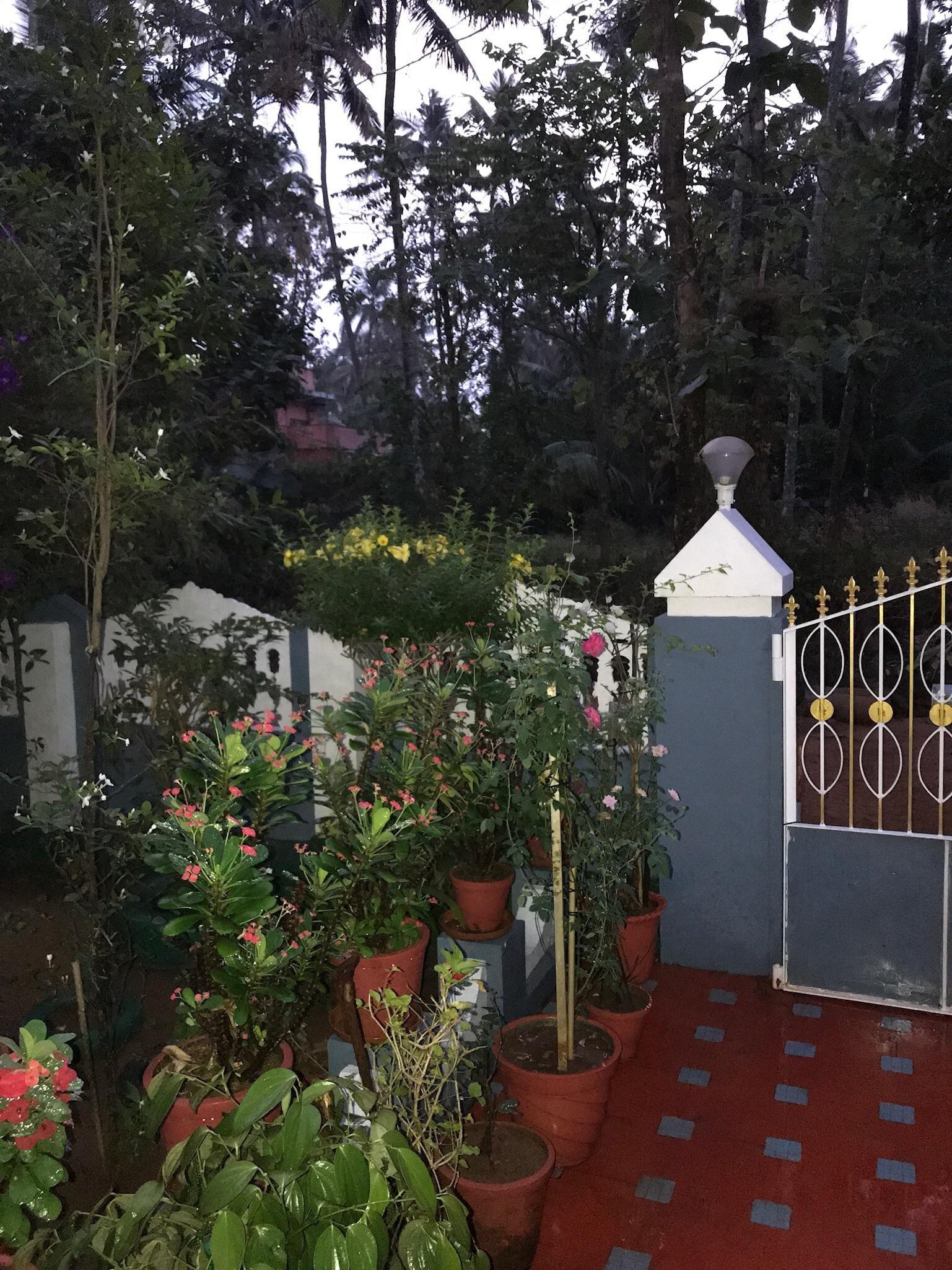 My Friends Garden House In India Gardening Garden Diy Home Flowers Roses Nature Landscaping Small Garden Landscape Hampton Garden Garden Landscaping