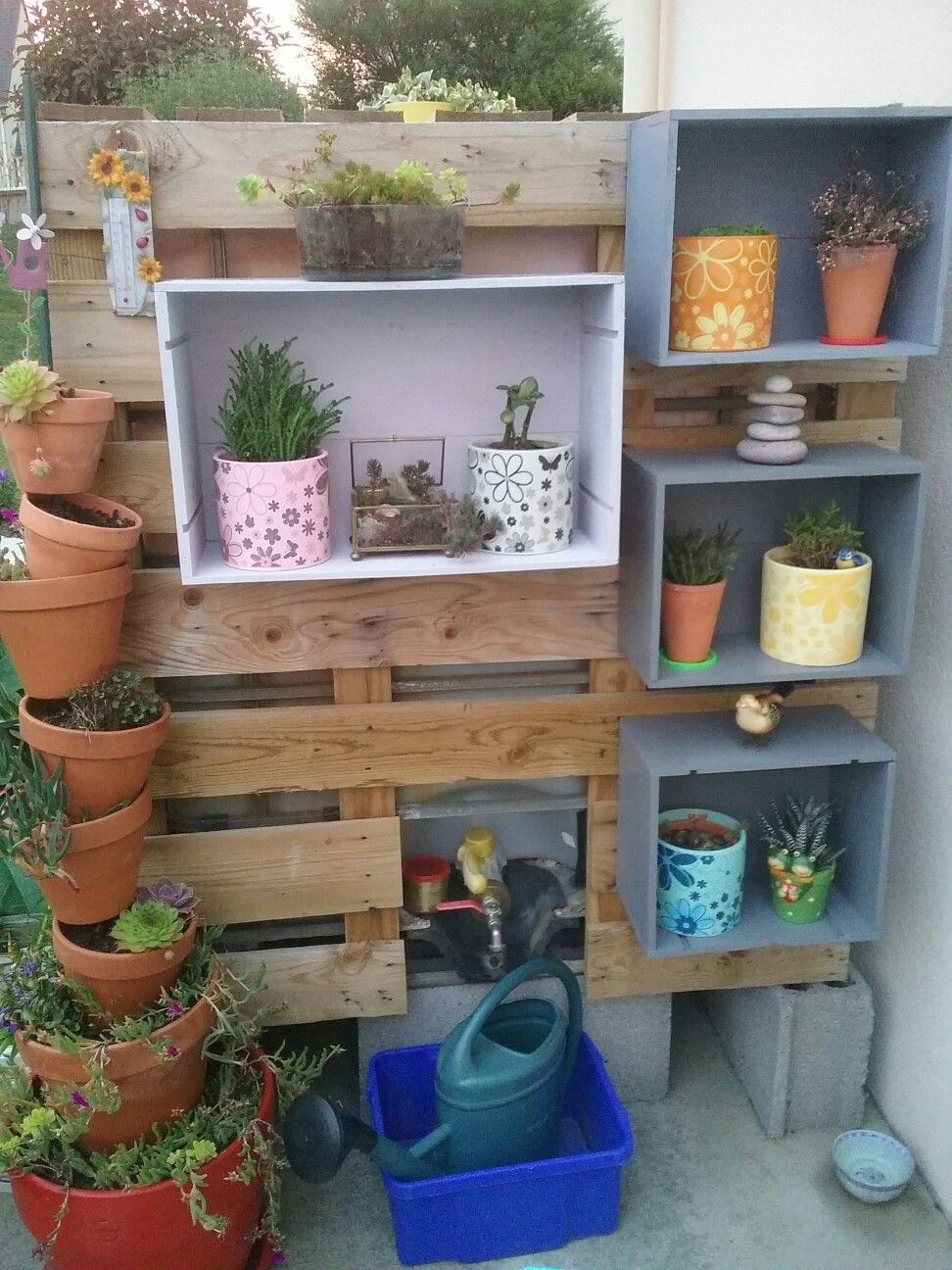 Mes petits casiers pour les succulentes